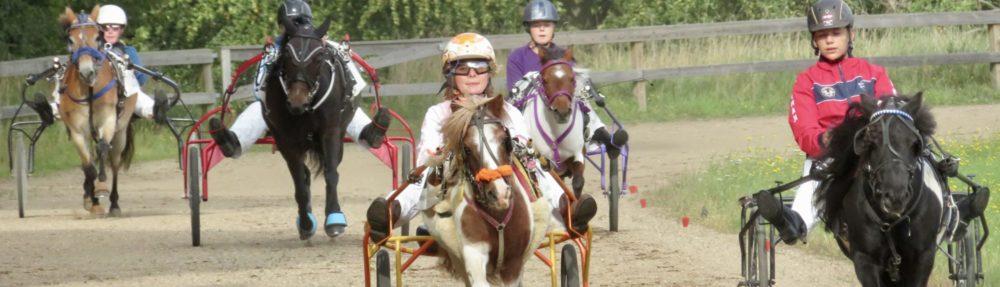 Dansk Pony Væddeløbsforening